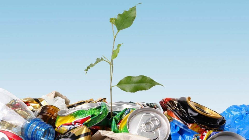 Экологическая фотовыставка «Металлолом» откроется 11 октября