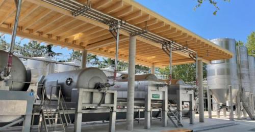 Севастополь может стать первым регионом, в котором появится органическое вино