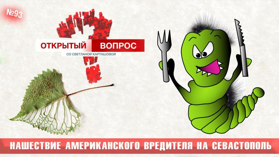 Американский вредитель атакует Севастополь
