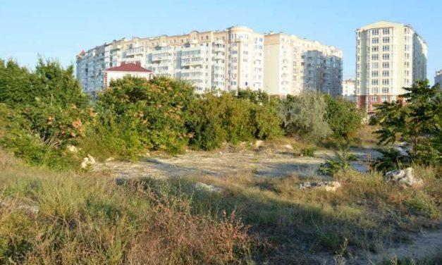 Севастопольского «дровосека» снова развернули от фисташковой рощи в Омеге