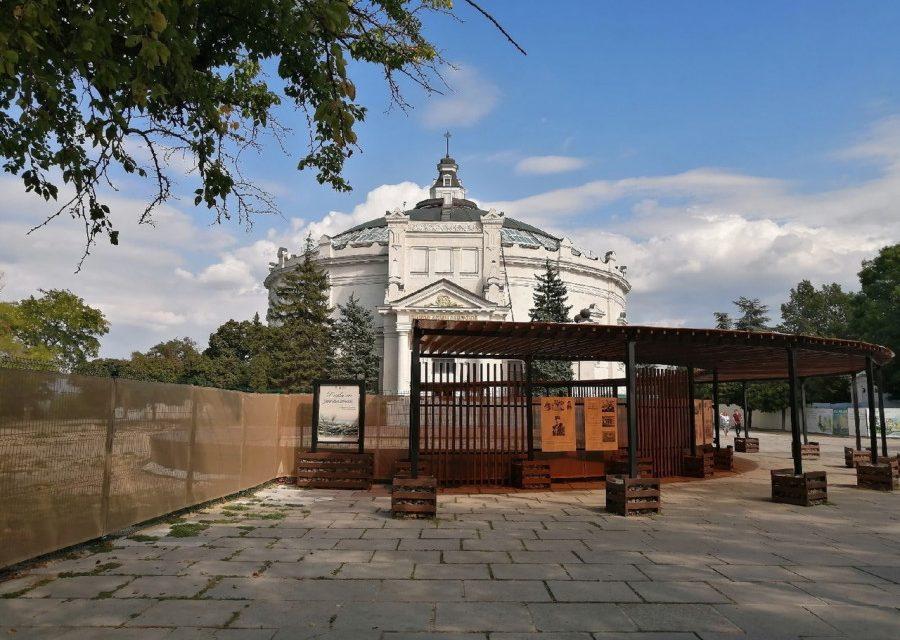СевСети #1313. Съедобные кактусы, дорога к школе и благоустройство Севастополя