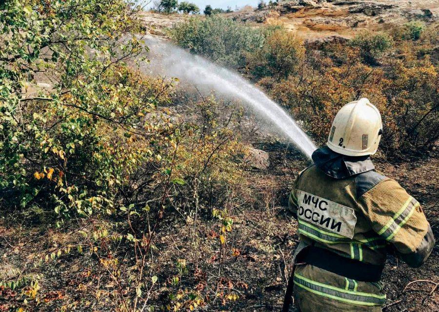 В Севастополе горел гектар зелени