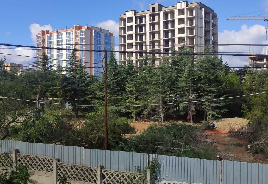 Вырубка сотен деревьев в бухте Казачья законная, – Севприроднадзор